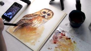 Рисуем сову. Онлайн.