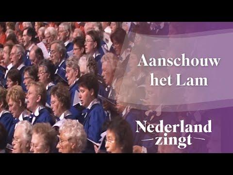 Nederland Zingt: Aanschouw het Lam