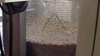 Линия бланширования и обжарки арахиса в масле производительность 800 1000кг в час