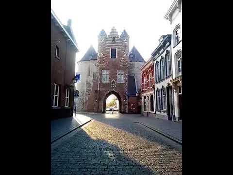 Случайная поездка в Bergen op Zoom. Культурный рай.