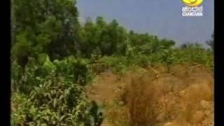 chandana dd tv ಕನ ನಡ thaana yaana dakshina kannada plilkula nisargadhama part 2