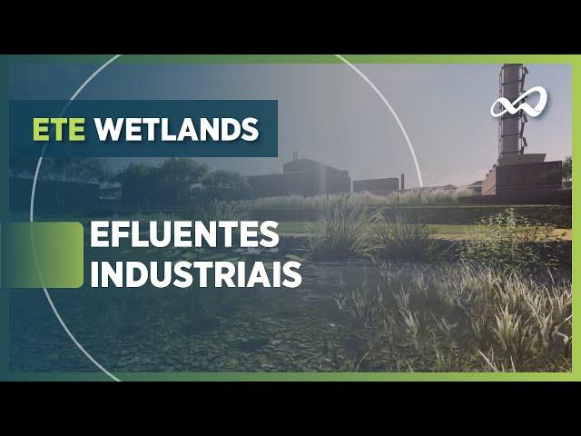 Simulação de sistemas wetlands | efluentes industriais
