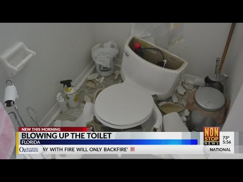 Cindy Scull Mornings - Lightning sparks gas that BLOWS UP Toilet