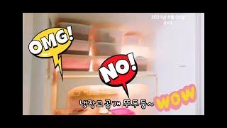 210806ㅡ[생리1일차]살뺀자의|냉장고|공개#다이어트…