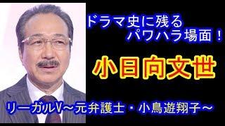 ゴシップ 芸能ニュース リーガルV ~元弁護士・小鳥遊翔子~ #04 https:...