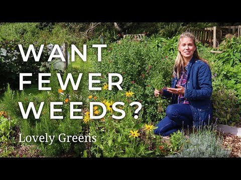 3 Tips for Gardening with Fewer Weeds from YouTube · Duration:  11 minutes 36 seconds