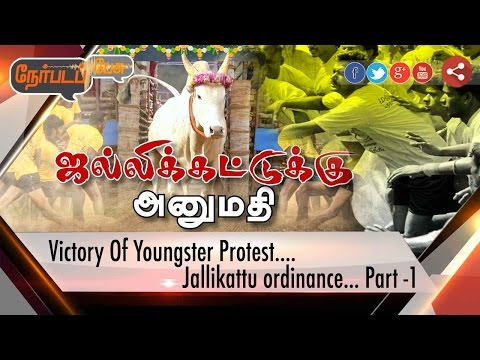 Nerpada Pesu: Victory Of Youngster Protest on Jallikattu Ordinance | Part 1 | 21/01/2017