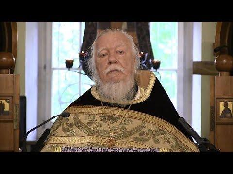 Протоиерей Димитрий Смирнов. Проповедь об отвержении себя и о вере