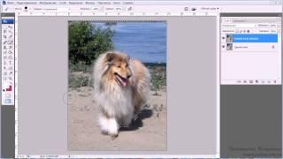 Уроки Photoshop #64. Как размыть фон в фотошопе(Интересные и понятные уроки по освоению Фотошопа  Photoshop CC ! Все уроки тут https://www.youtube.com/playlist?list=PLYQ3_PoIW4vhjPcZmtafD3T., 2015-06-07T11:57:27.000Z)