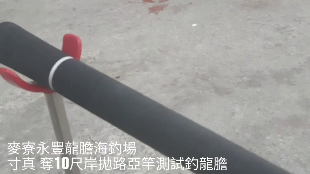 麥寮永豐龍膽海釣場 寸真岸拋竿釣龍膽測試 - YouTube