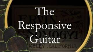 Ervin Somogyi: The Responsive Guitar - featuring  Guitarist / Composer Steve Erquiaga