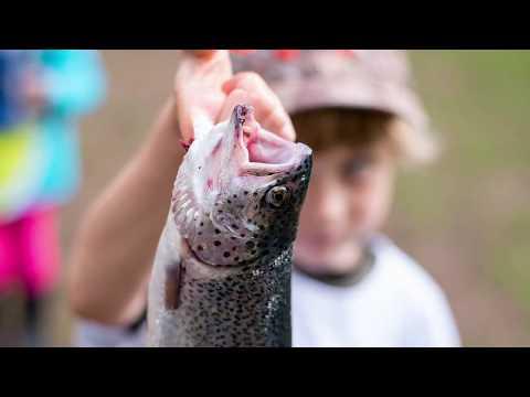 Bill Yarlott Youth Fishing Derby in Moran State Park