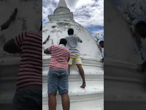 Facebook Live: Namal Rajapaksa Birthday Celebrations 4