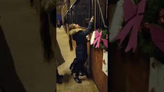 Cadeau surprise cheval pour ma fille grand moment d'émotion