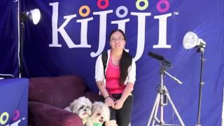 Shih Tzu, Kenny & Shih Poo, Jaime - June 9, 2013