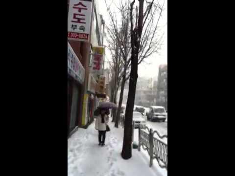 Korea sasang busan