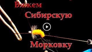 Сибирская Мушка 2011