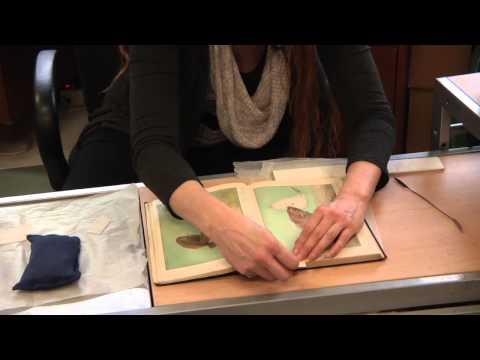 UBCIC Tutorial #5: Paper Mending