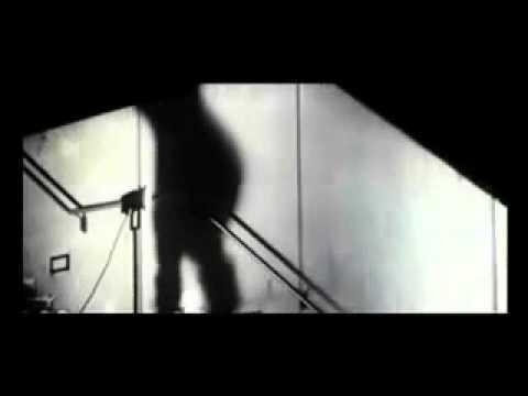 york shackleton-snowrider