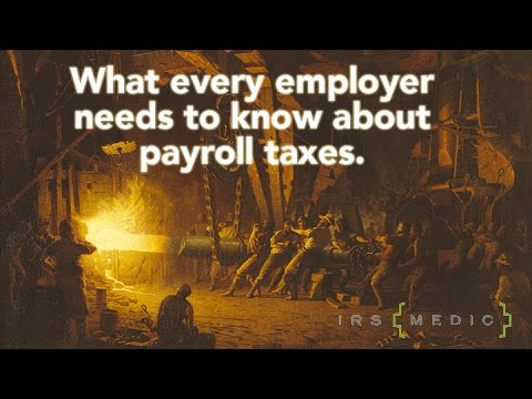 What every business owner needs to know about payroll taxes
