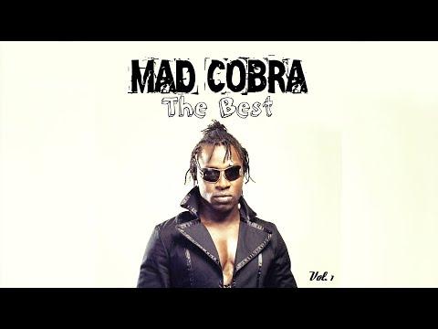 Ninja Man VS Mad Cobra Sting 1995