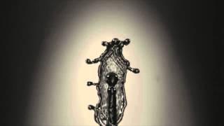 Gerard Capuae - Antonomasia [ Consueto / CNST002 ]
