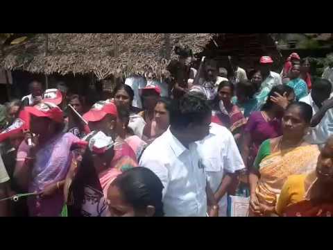 Ma Foi K. Pandiarajan AVADI Constituency AIADMK Candidate Video 3