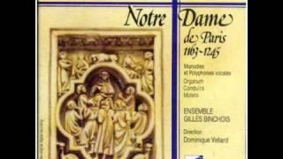 Ecole de Notre Dame de Paris - Anon. Rondellus: Salva nos, stella Maris
