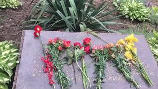 Светлая память погибшим воинам в Великой Отечественной Войне ( 1941 -1945 г.)Видео-ролик.