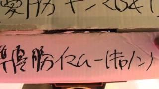 第19回STINGER CUP 喜島VS今村 ②