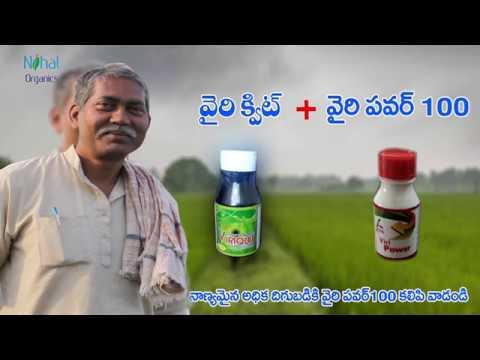 Nihal Organics New promo