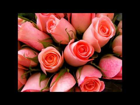 Поздравления по цветочному гороскопу Магнолия