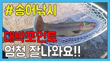 [TV바이트]송어낚시 대박 잘 나오는곳ㅣ 기본사이즈 45cm 이상!ㅣ초보자 무조건 추천