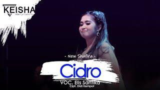 Download Mp3 Elis Santika - Cidro | New Shafira Live Banjaran Driyorejo - Gresik 2019