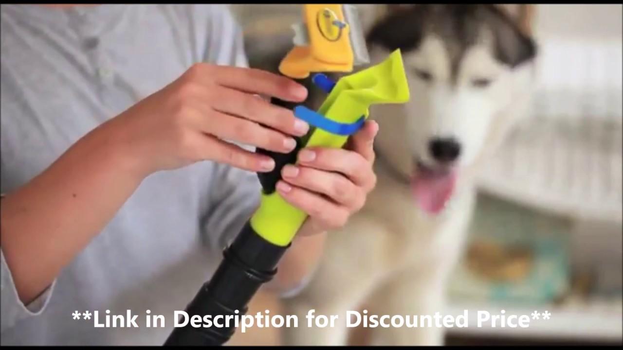 Dog Brush Vacuum Attachment You