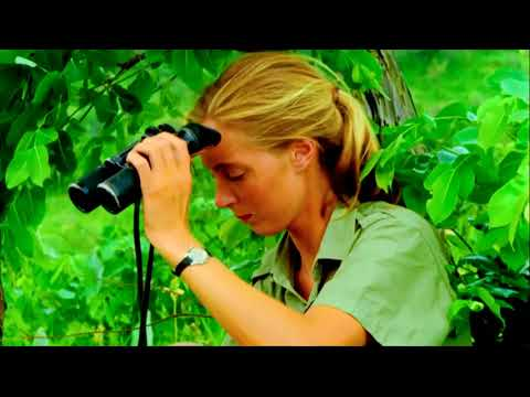 TimesTalks | Dr. Jane Goodall and Brett Morgen