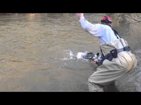 World's Hottest Trapper Catches Trout