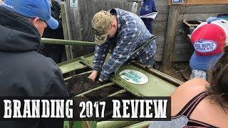 Branding 2017 Review