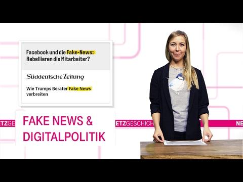 Social Media Post: Fake News und Digitalpolitik - Netzgeschichten