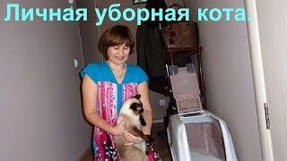 Кошачья уборная (очень удобный кошачий туалет)