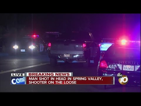 Man shot in the head in Spring Valley