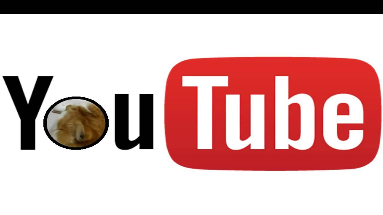 You Tube Kitty