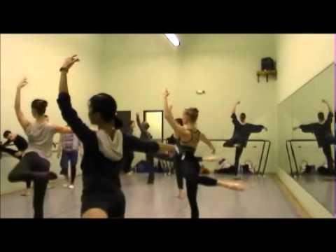 Classical Professional Ballet Class