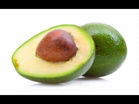 АВОКАДО ДОМА: уход, прививка авокадо, укоренение черенков 🥑🥑🥑
