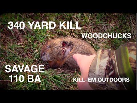 Woodchuck Hunting NY