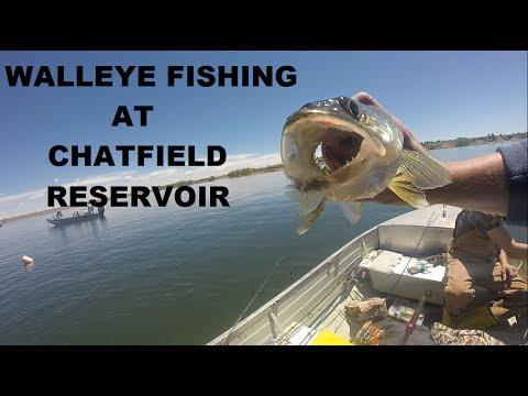 Walleye Fishing At Chatfield