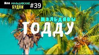 Папайевый остров. Мальдивы   ММБ #39