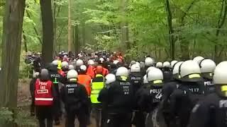 Niemiecka policja pacyfikuje ekologów w lesie Hambach