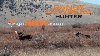 How To Use goHunt INSIDER To Draw Idaho Big Game Tags