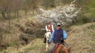 阿蘇ブルーグラスの乗馬 高森城趾,かりん山での馬上花見